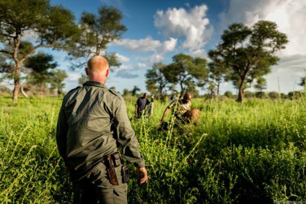 anti poaching geos